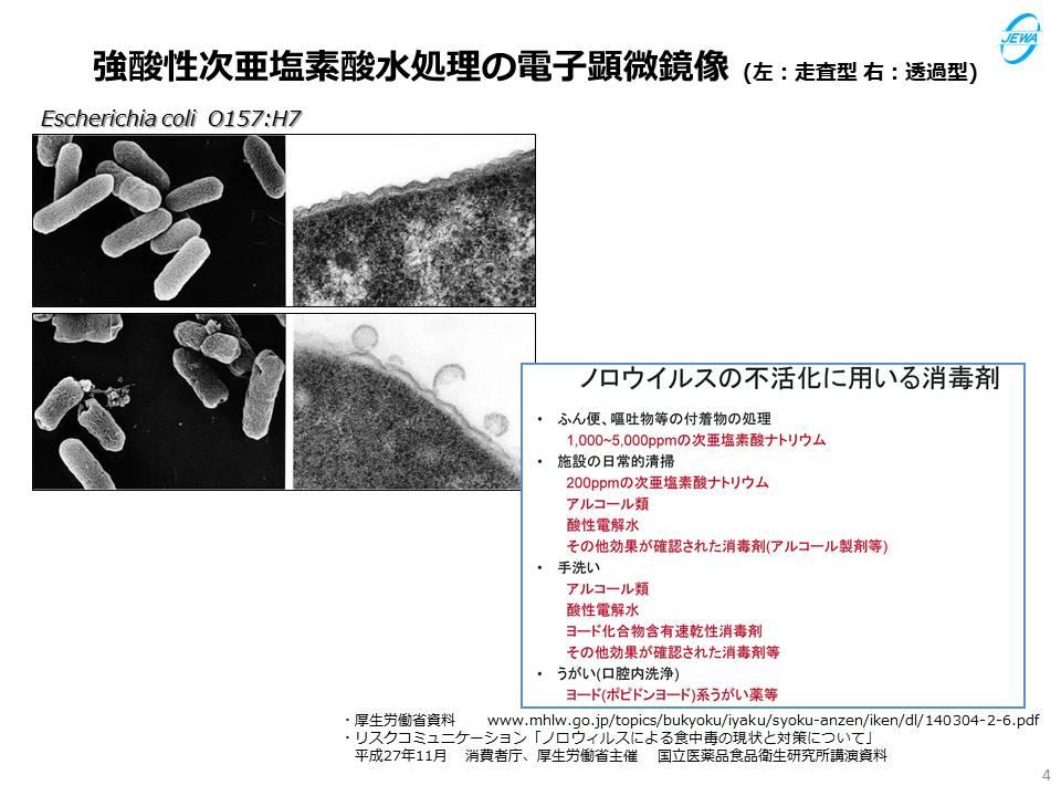 強酸性次亜塩素酸水処理の電子顕微鏡像 (左:走査型 右:透過型)