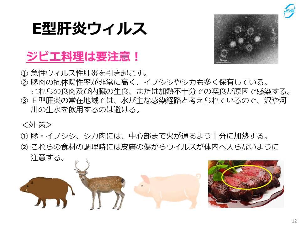E型肝炎ウィルス