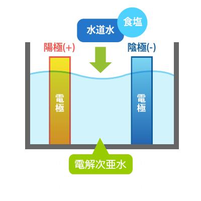 電解次亜水の「生成原理」の図